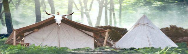 File:Banner---Misty-Forest-Goblin-Camp.jpg