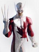 WolverineHeroesofWar