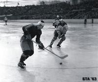 1962-63 BUL