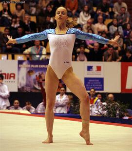 2008eurosfxef