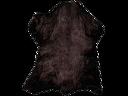 Cured Black Bear Hide