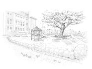 Ayakashi Kan Sketch 4