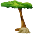 Forest 17.png