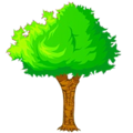 Forest 42.png