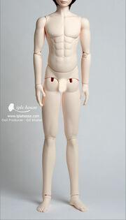 Yidbody-male-muscle