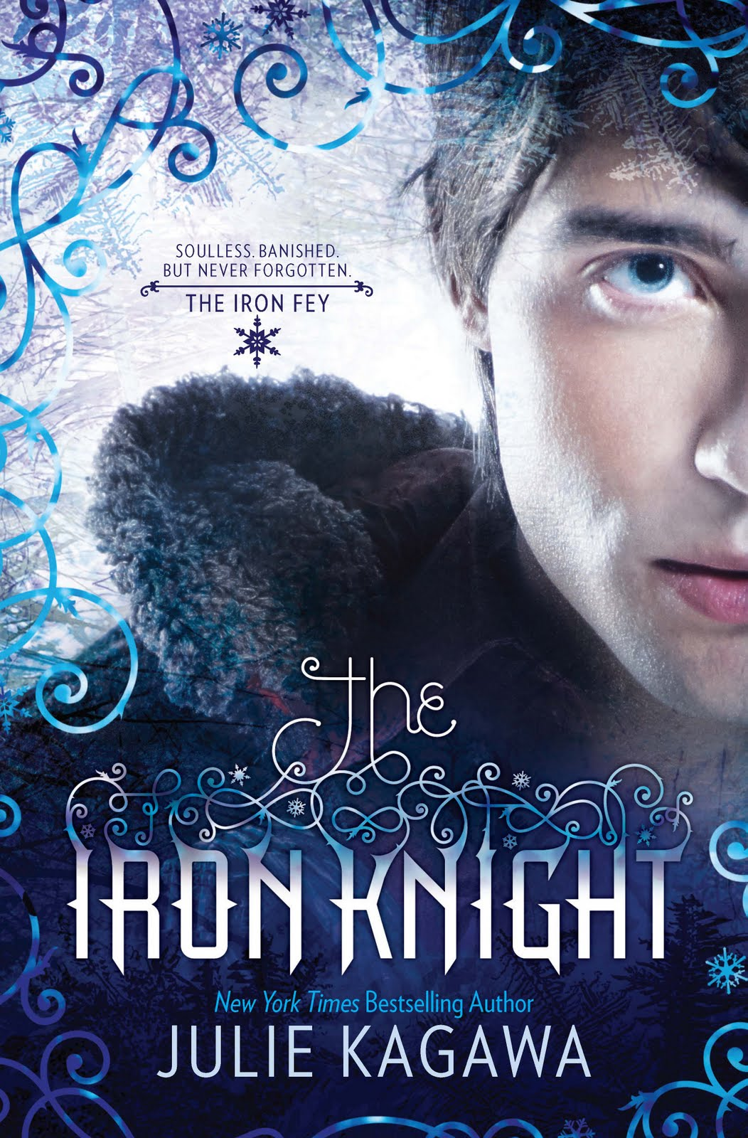 Photography Book Cover Fee ~ The iron knight fey wiki fandom powered by wikia