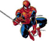 Spider Man.jpeg