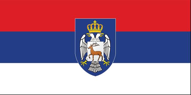 File:Wsrnskaflag.png