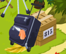 Suitcase and crate