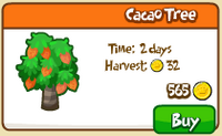 Cacao tree shop