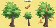 Tamarind tree family