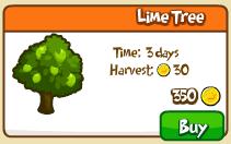 Lime tree shop