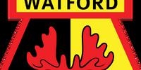 Watford (2014-15 away)