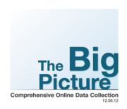 Big-picture-logo-final