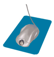 File:Mouse.jpg
