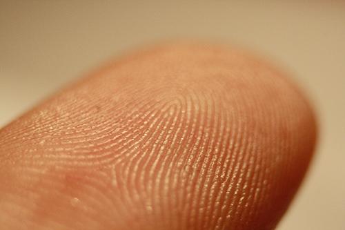 File:Fingerprints00a.jpg