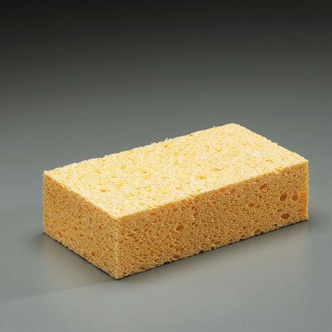 File:Sponge.jpg