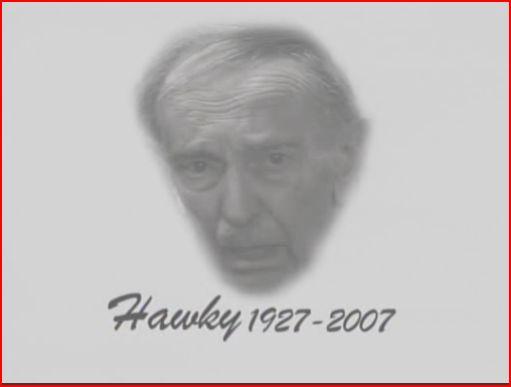 File:Hawky.jpg