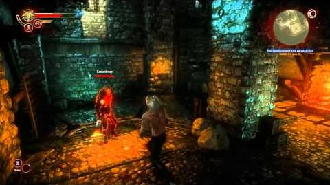 Baroness (Torture) (The Witcher 2) HD