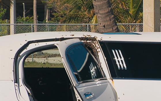 File:Beehive limo 2.png