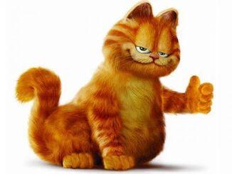 Garfield 1924-480x360