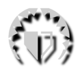 Damage shield icon.png