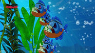 Pirate Piranhas-Attack Of The Pirate Piranhas01