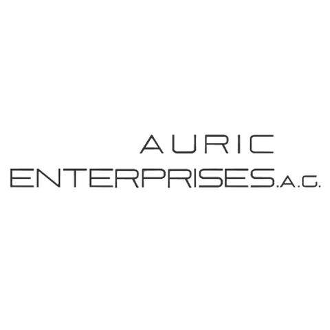 File:Auric Enterprises A.C.png