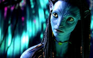 Neytiri Wallpaper-245070