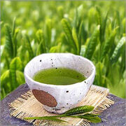 Sencha-gyokuro green-tea