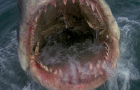 File:Great White Shark from Jaws 3.jpg
