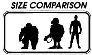 Size Comparizon