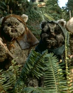 ewok jedipedia fandom powered by wikia. Black Bedroom Furniture Sets. Home Design Ideas