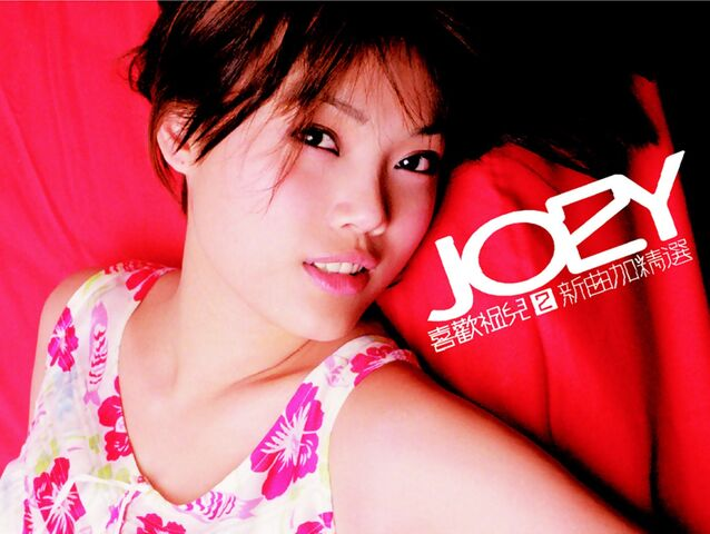 File:Joey LoveJoey2 2ndEd Outer Cover Front.jpg