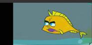 Johnny Fish