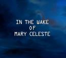 In the Wake of Mary Celeste