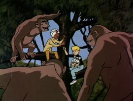 Jonny and Hadji among ape people