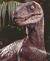 File:Raptor!.jpg