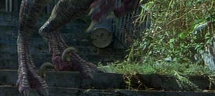File:Raptor feet.jpg