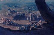 Lion graveyard 2