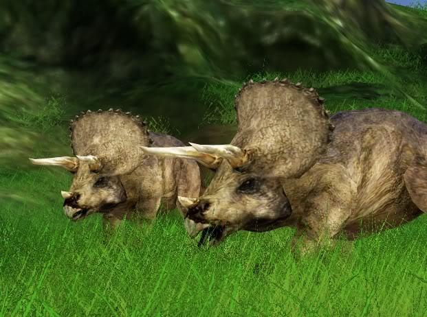 File:JPOG triceratops.jpg