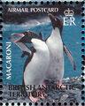 British Antarctic Territory 2003 Penguins of the Antarctic k.jpg