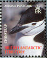 British Antarctic Territory 2006 Penguins of the Antarctic d.jpg