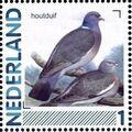 Netherlands 2011 Birds in Netherlands a24.jpg