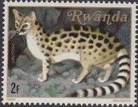 Rwanda 1981 Carnivorous Animals c