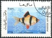 Afghanistan 1986 Fishes a
