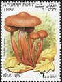 Afghanistan 1998 Mushrooms b.jpg