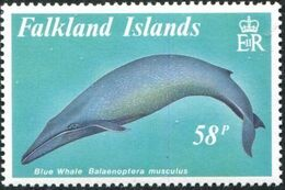 Falkland Islands 1989 Whales d