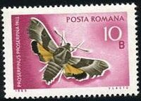 Romania 1969 Butterflies b