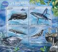 Burundi 2012 Protection of Nature - Save the Whales a.jpg